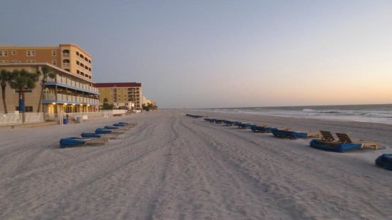 Doubletree Beach Resort by Hilton Tampa Bay / North Redington Beach: The beach