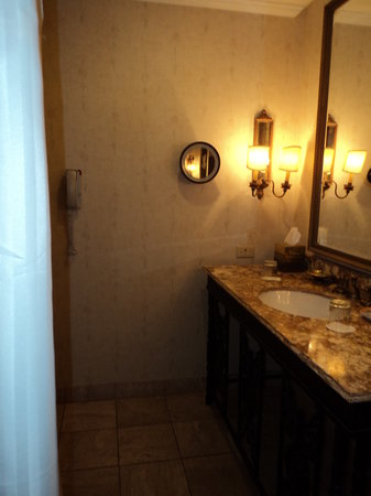 Adolphus Hotel: bath
