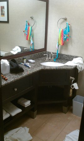 Four Points by Sheraton Kalamazoo: Corner vanity