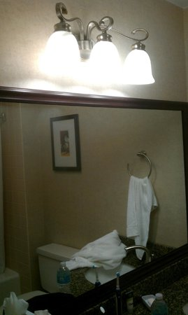 Four Points by Sheraton Kalamazoo: Bathroom light fixture