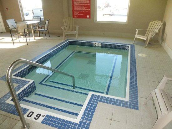 Executive Hotel Alexandra at Edmonton Airport: Hot tub temperature ~100 F