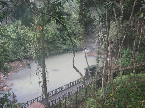 Tabin Wildlife Resort: View from our balcony