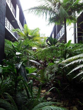 Peppers Noosa Resort and Villas: Outdoor