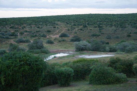 Addo Rest Camp : View from Rondavel #3