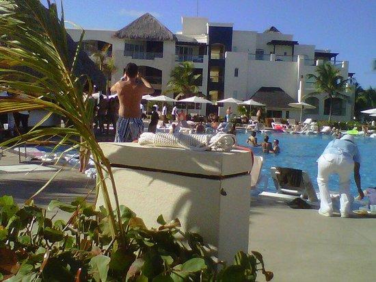 Hard Rock Hotel & Casino Punta Cana: Main pool food and bar was nice. Along with entertainment.