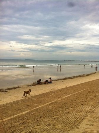 อินเตอร์คอนติเนนทัล บาหลี รีสอร์ท: после отлива местные жители приходят на пляж собрать моллюсков на суп