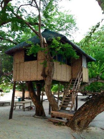 Magalawa Island Armada Resort: Bahay Kubo Tree House Room Without Toilet and Bath