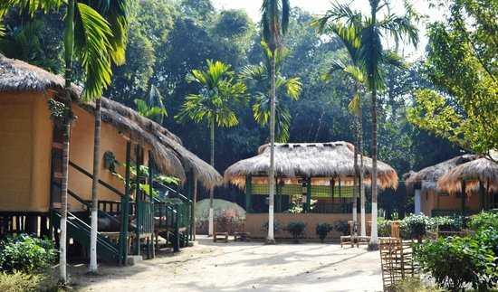 Nature Hunt Eco Camp, Kaziranga National Park: Cottages