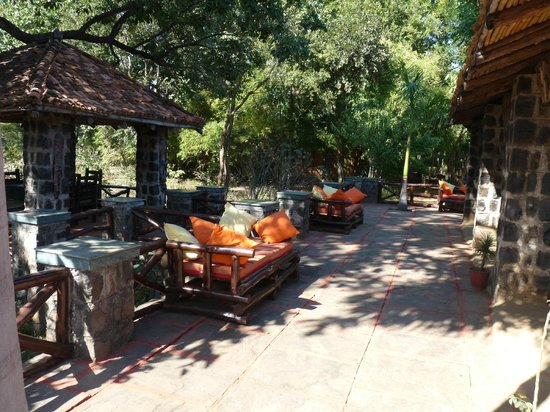 Nature Heritage Resort : One can sit, relax and enjoy the sun