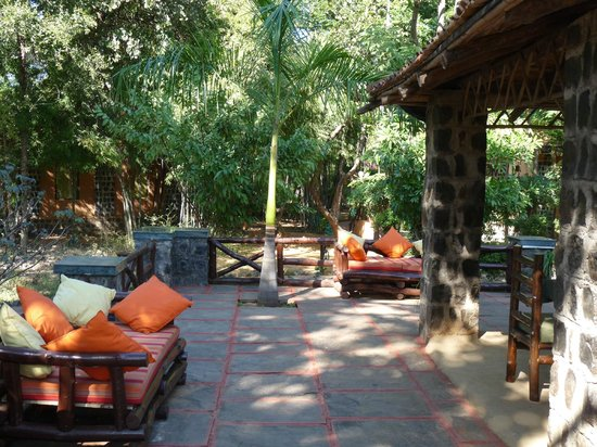 Nature Heritage Resort : One can sit, relax and enjoy the sun - near breakfast area
