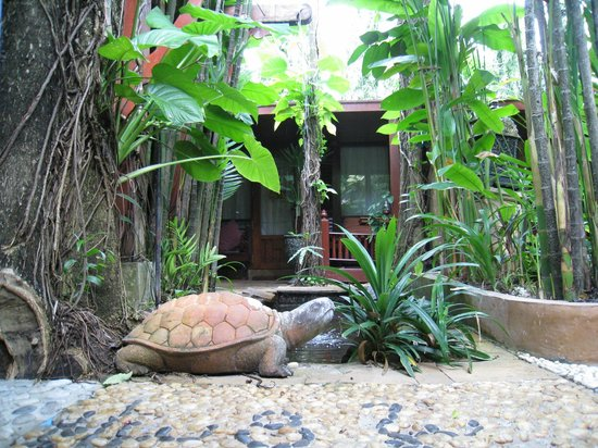 Sawasdee Village: Our ever present turtle from the room veranda