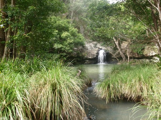 Kondalilla Eco Resort: Smaller falls