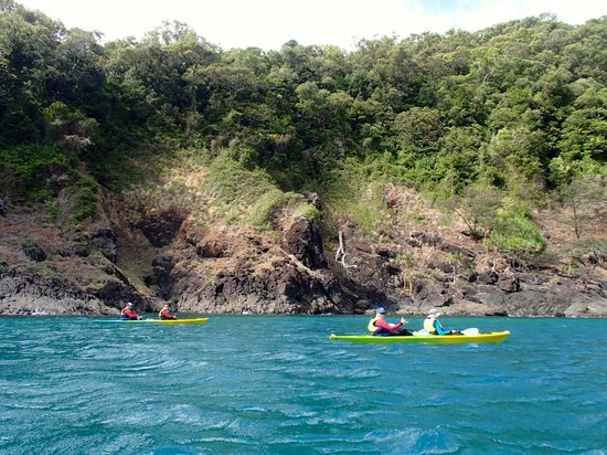 Tropical Sea Kayaks : riding the current