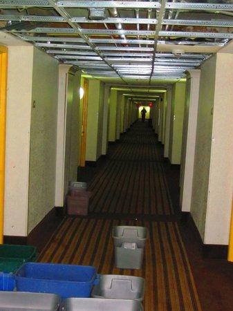 Red Roof Inn Neptune Beach - Mayport/Mayo Clinic: Dach undicht, Zimmer feucht