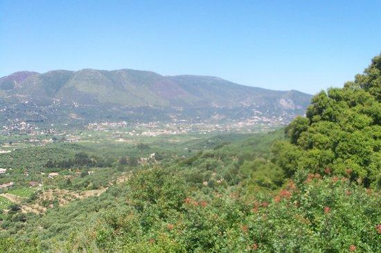 Planos Bay Hotel: View