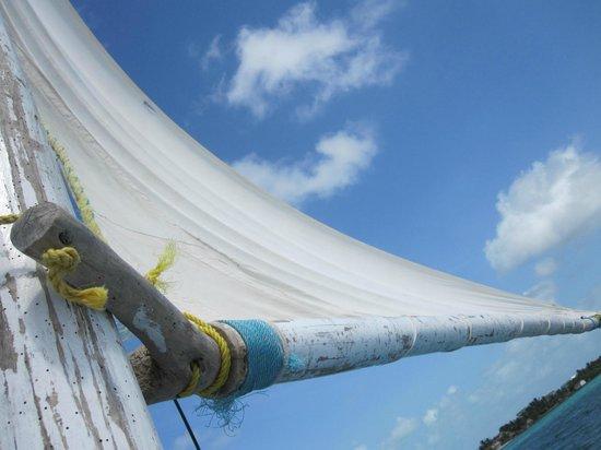 Caye Casa: Sailing