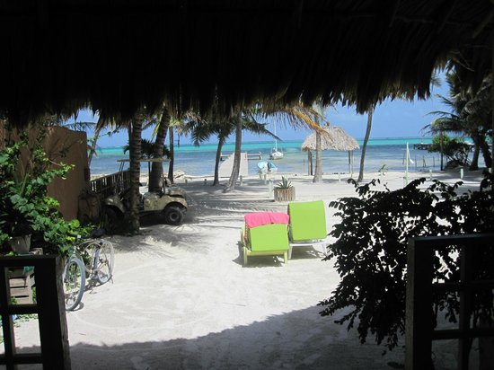 Caye Casa: View from room