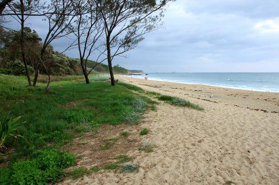 Korora Bay Village Resort: Hills Beach, a short 10 min walk away, well worth it.