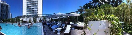 Yoo Punta Del Este: Panorâmica da piscina