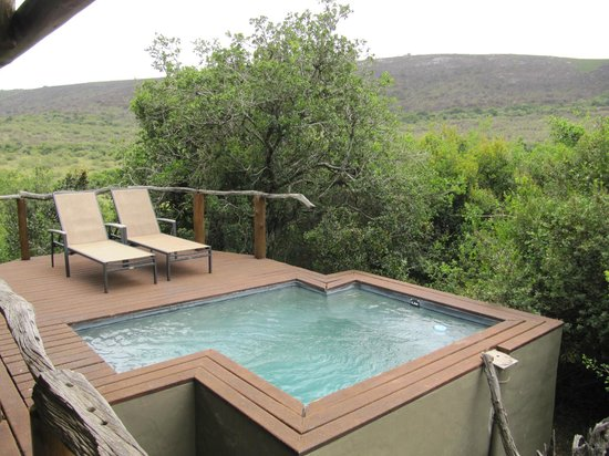Shamwari Game Reserve Lodges : our plunge pool