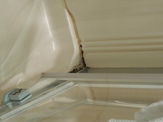 Hotel Las Arenas Balneario Resort: ducha