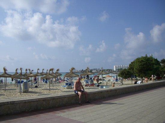 Protur Badia Park Aparthotel : Strand