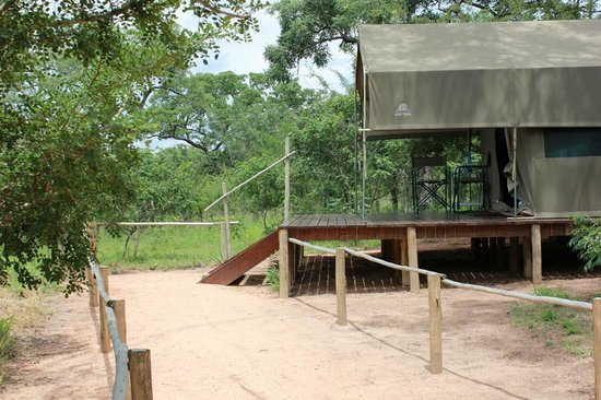Tydon Safari Camp: tenda