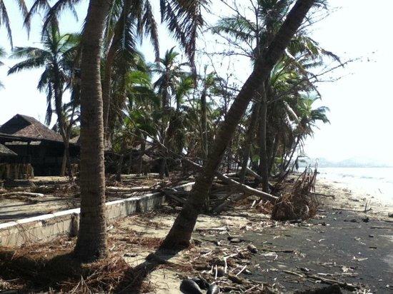 Sonaisali Island Resort Fiji: beach