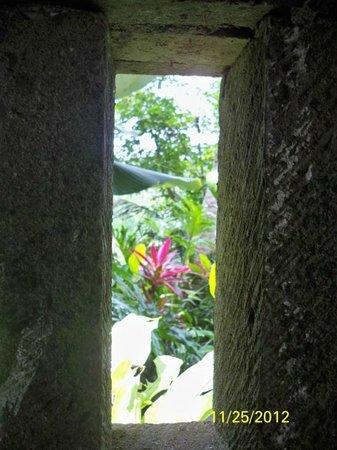 Bidadari Private Villas & Retreat: tunjung