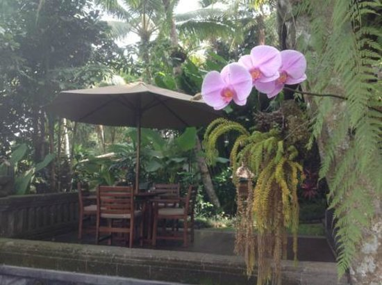 Bidadari Private Villas & Retreat - Ubud: orchids