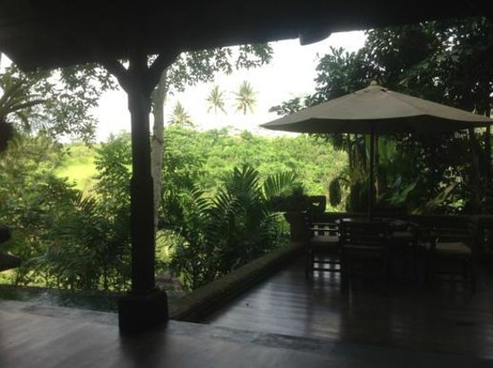 Bidadari Private Villas & Retreat: view from room (tunjung)