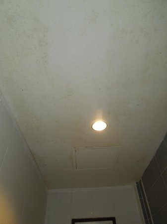Ivory Phi Phi Island: Mouldy bathroom ceiling