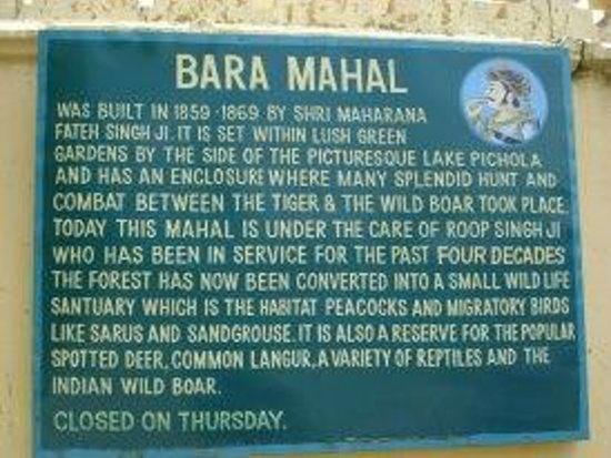 The Oberoi Udaivilas: Bara Mahal