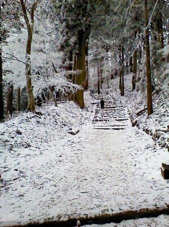 Mt. Atago: 冬の参道