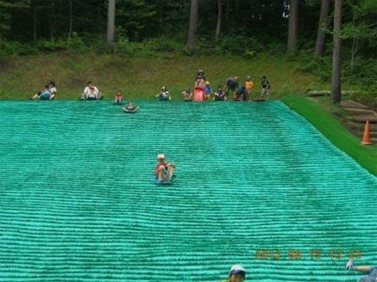 Tirol no Mori: 芝生ソリ滑り