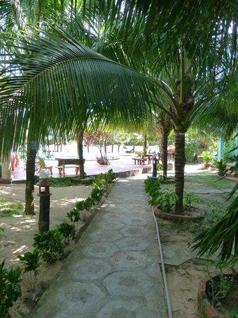 Tien Phat Beach Resort: Территория отеля