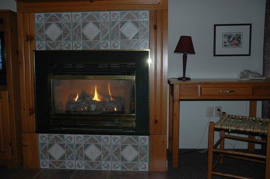 Auberge La Porte Rouge: Foyer à gaz imitation cheminée feu de bois