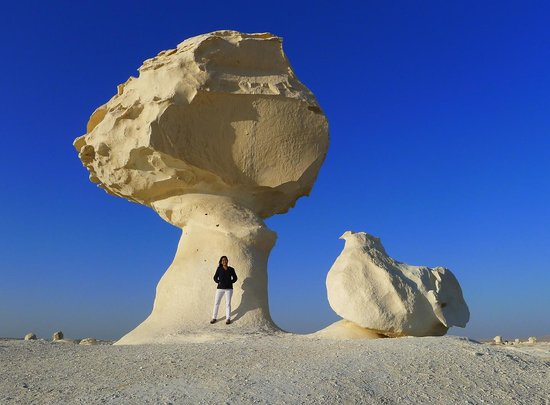 White Desert: the chicken and the mushroom!