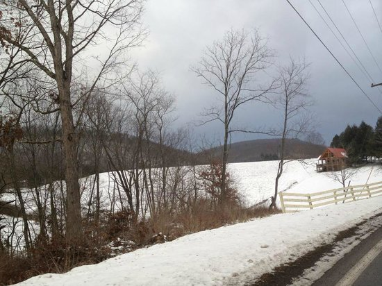 Locust Hill Inn, Cabin & Pub: View of the Cabin from the Road