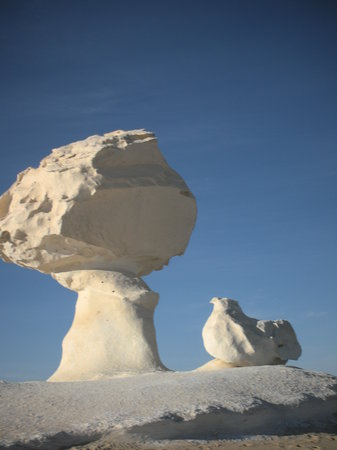 Egypt Tailor Made Day Tours: White desert