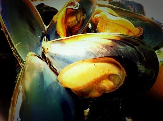 Ristorante Byblos: Freschezza!!!(Foto Gatti)
