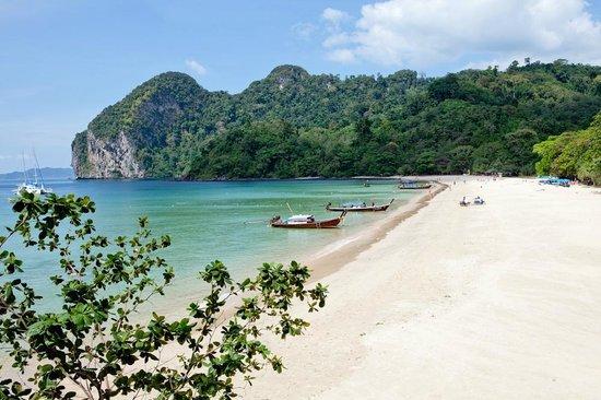 Koh Mook Charlie Beach Resort Amazing Charlies Aka Farang This