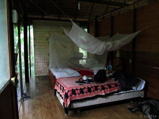 Ecoaldea Kapievi: My hut, Estrella