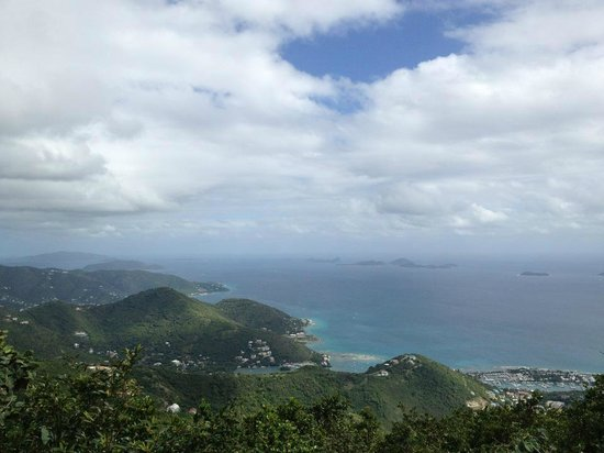 Sage Mountain National Park: View of Tortola S shore from Mt Sage
