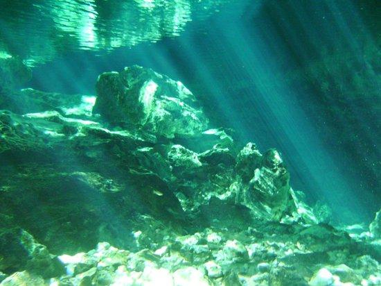 Scuba Playa Dive Shop : Chac-mool cenote