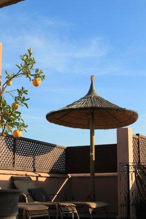 Riad Dar Beldia : douche sur la terrasse