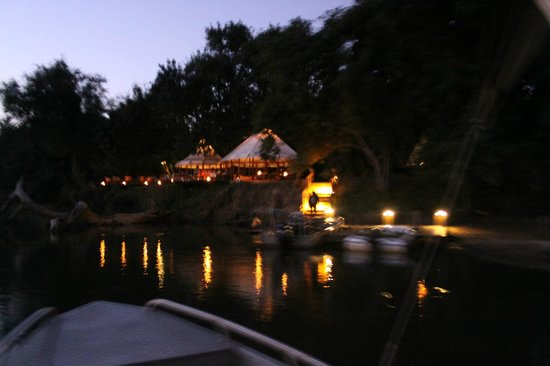 Sausage Tree Camp: Taken from a boat on the Zambezi one evening
