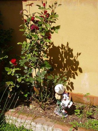 La Bicocca: il nostro piccolo nano