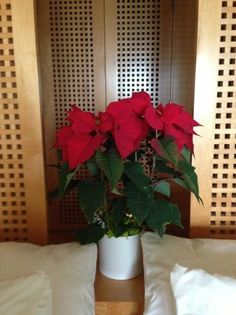 ‪‪Viceroy L'Ermitage Beverly Hills‬: Poinsettia in room