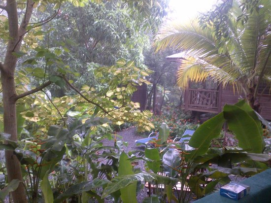 Villagio Verde: View from porch during a tropical rainstorm